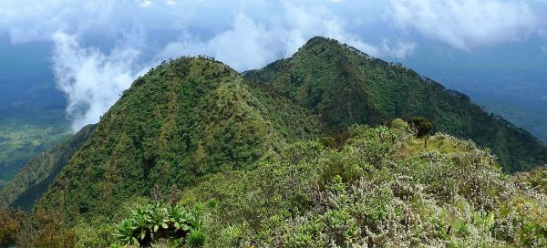 Ascent to volcano Sabyinyo: Weather and season