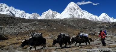 The most beautiful treks in the world