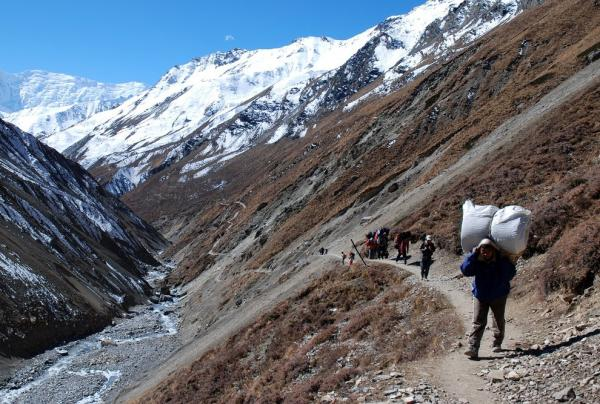 Carrier just before Thorong Phedi