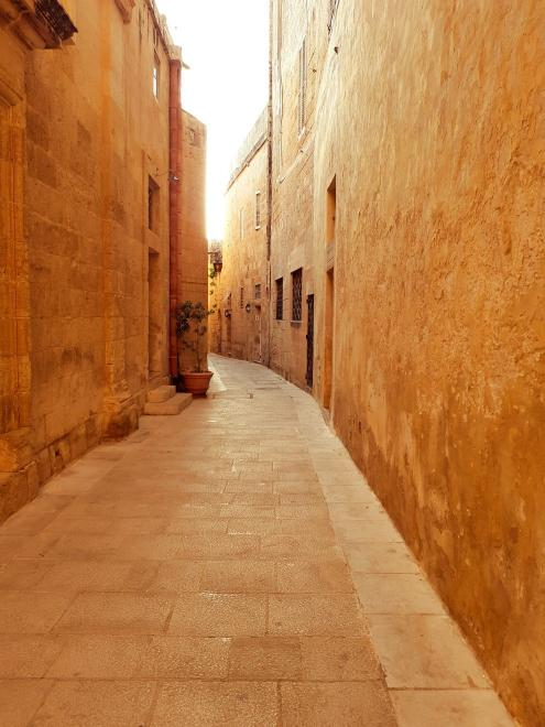 Alleys of the old town