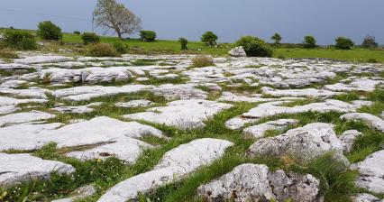 Trip to the Burren National Park