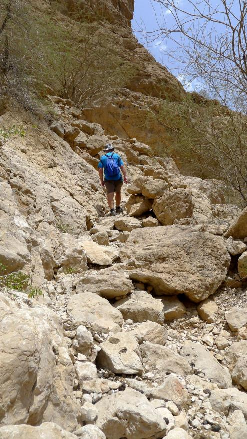Ascent to the rock ledge