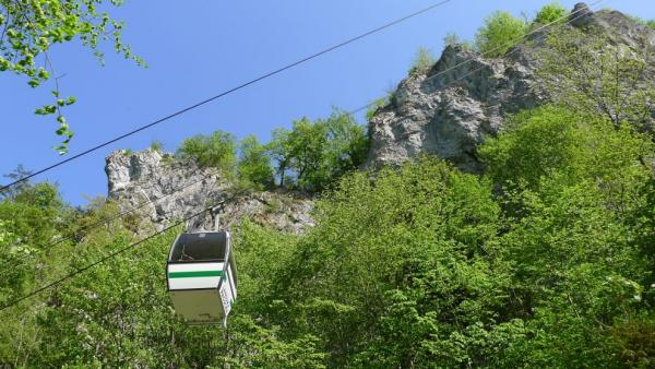 Under the cable car