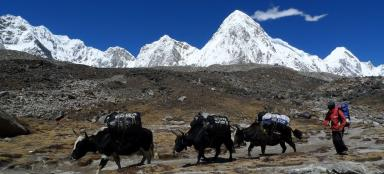 What to take on a trek to Nepal