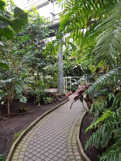Botanical Garden at the Faculty of Charles University