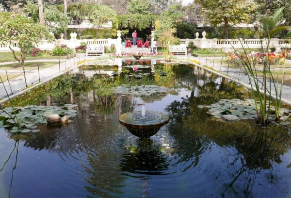 Ponds in the Garden by Dreams