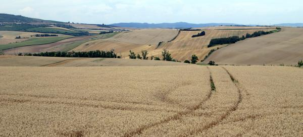 Moravian Tuscany - what, when and where to take pictures