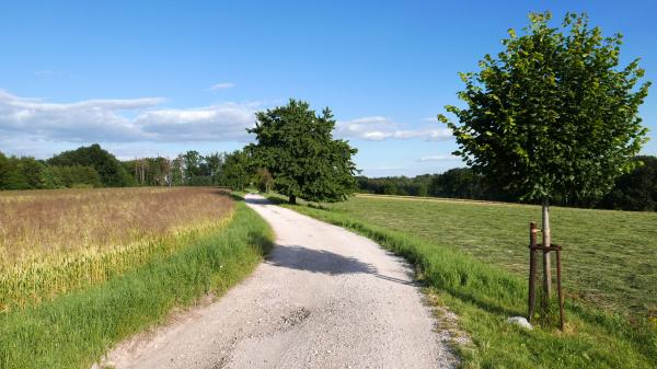 The road to the top of Hůra